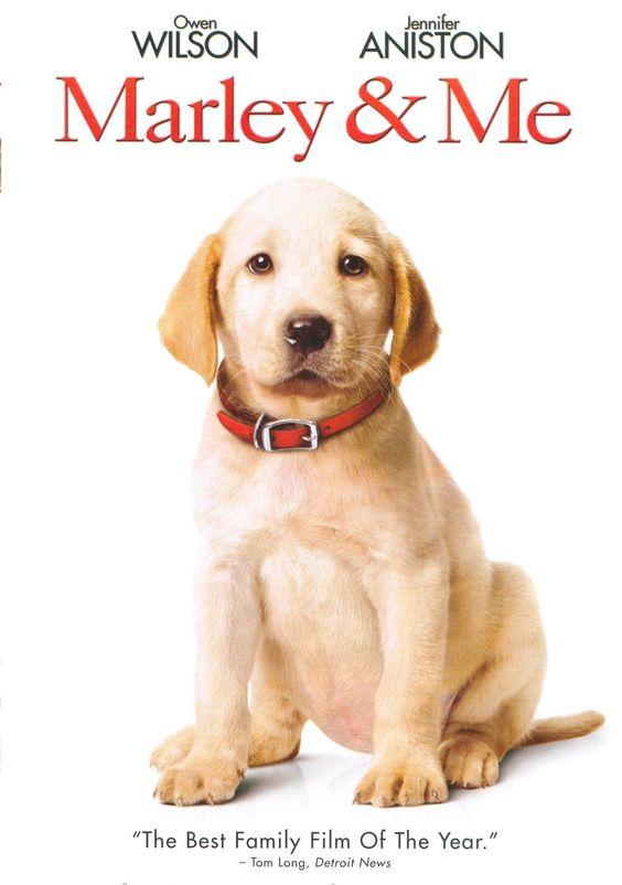 marley & me movie | Marley & Me Movie | TVGuide.com
