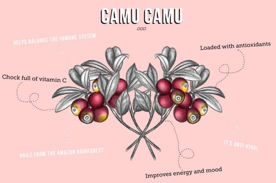Superfood Spotlight: Camu Camu! - Move Nourish Believe
