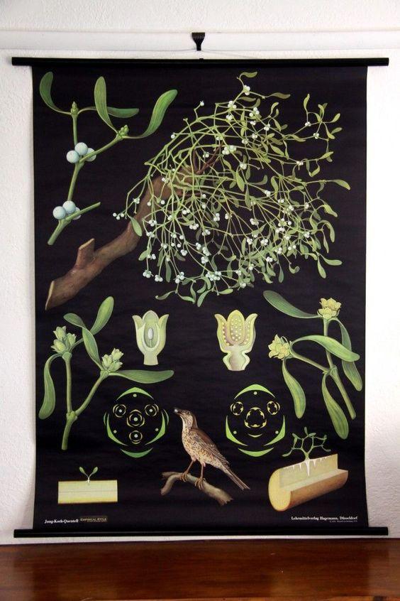 Mistletoe Wall Chart- www.burkedecor.com: