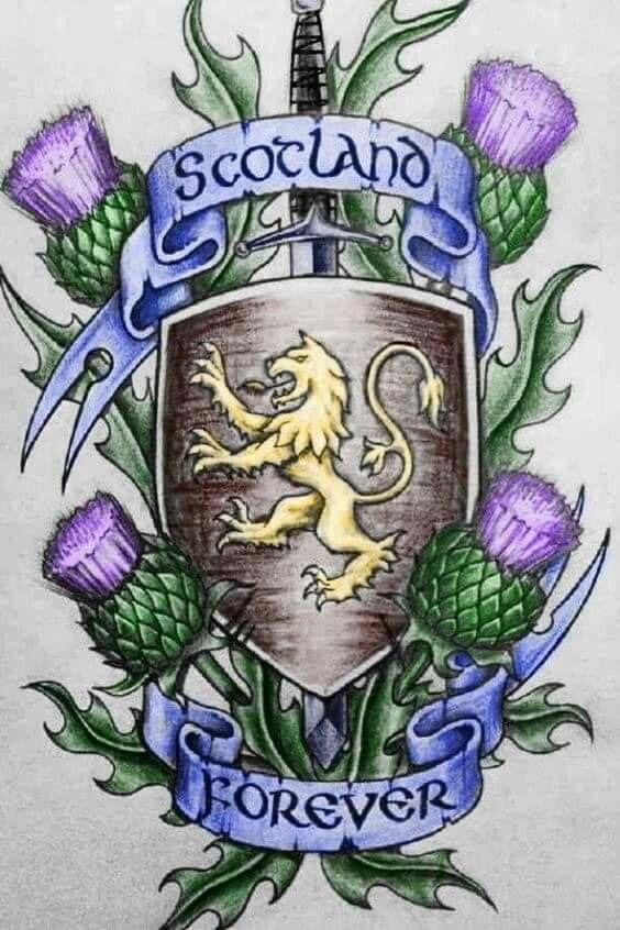 SCOTTISH THISTLE SYMBOL h National Flower of Scotland KILT PIN