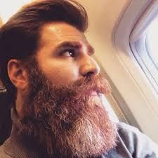 Image result for persian men with beards