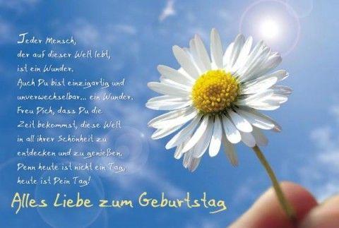 Geburtstagskarte Alles Liebe Zum Geburtstag Ganseblumchen