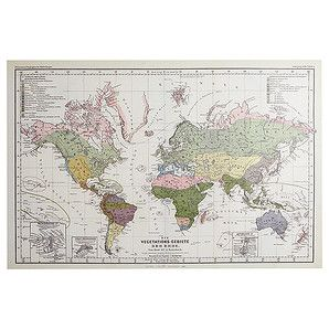 World map canvas print target australia apartment things world map canvas print target australia apartment things pinterest study office apartments and walls gumiabroncs Images