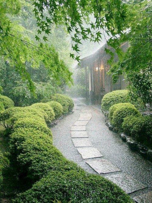 #rainy #fall #garden #rain #autumn #herfst #regenachtige #tuin #nazomer #tuin #inspiration #inspiratie #september #october #oktober #november ♥ #Fonteyn