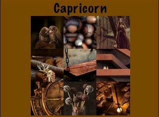 Brown capricorn