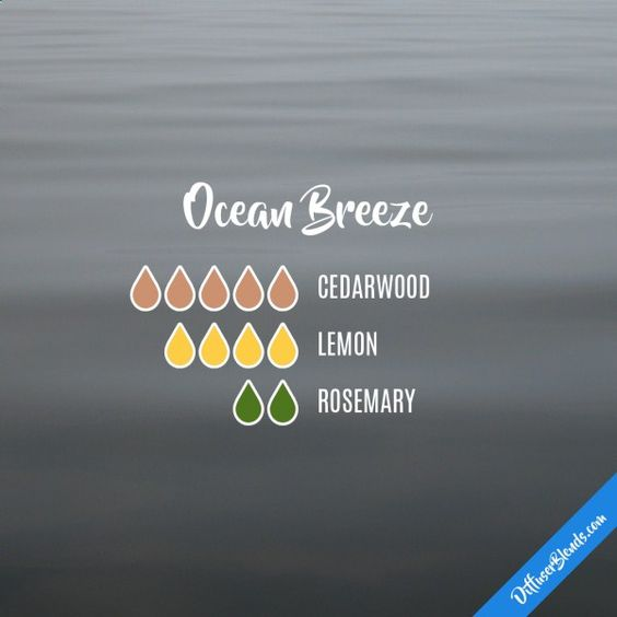 Ocean Breeze - Essential Oil Diffuser Blend