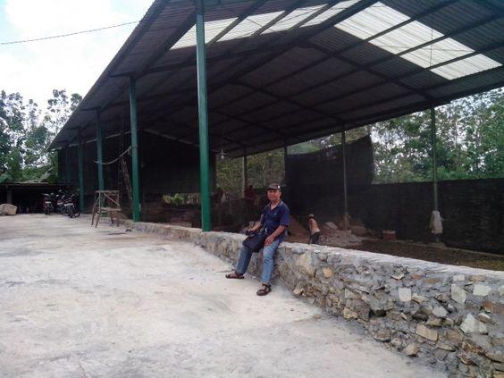 Pabrik Pupuk