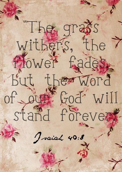 """A relva murcha, e as flores caem, mas a palavra de nosso Deus permanece para sempre. """" Isaías 40:8"""