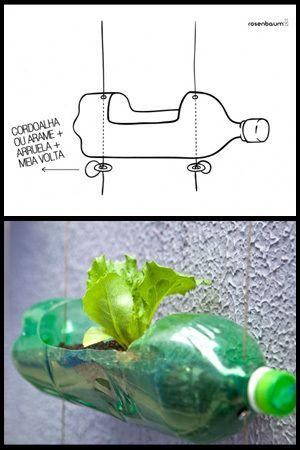 Crie o seu próprio jardim urbano DIY usando garrafas de refrigerante de plástico!