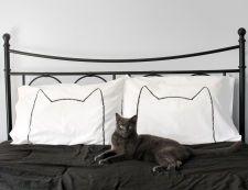 Cat Nap Pillow case Set : 200TC, home decor, bedding