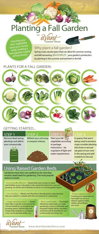Fall Vegetables Vegetable Garden And Fall On Pinterest 640 x 480