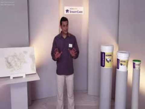 Asianpaints Smartcare Damp Proof Youtube Youtube Damp Proof