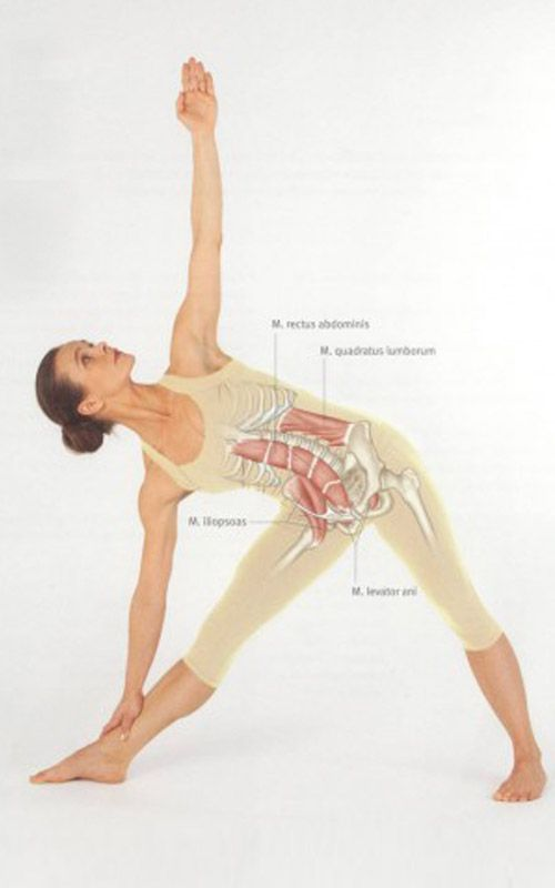 Revolved Triangle Pose Yoga Images & Pictures - Becuo