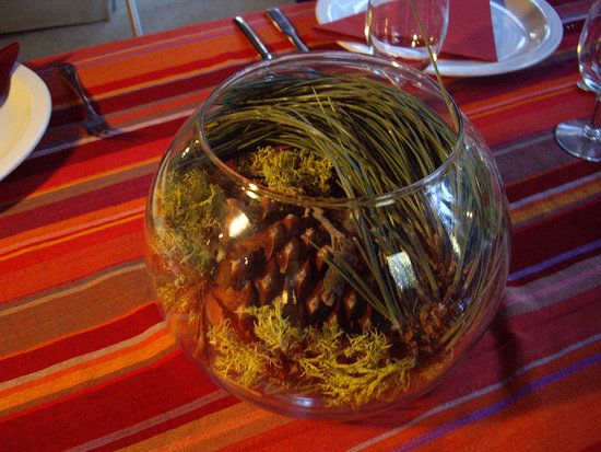 Kidoodle: Easy Thanksgiving Centerpiece and a Little Stroll