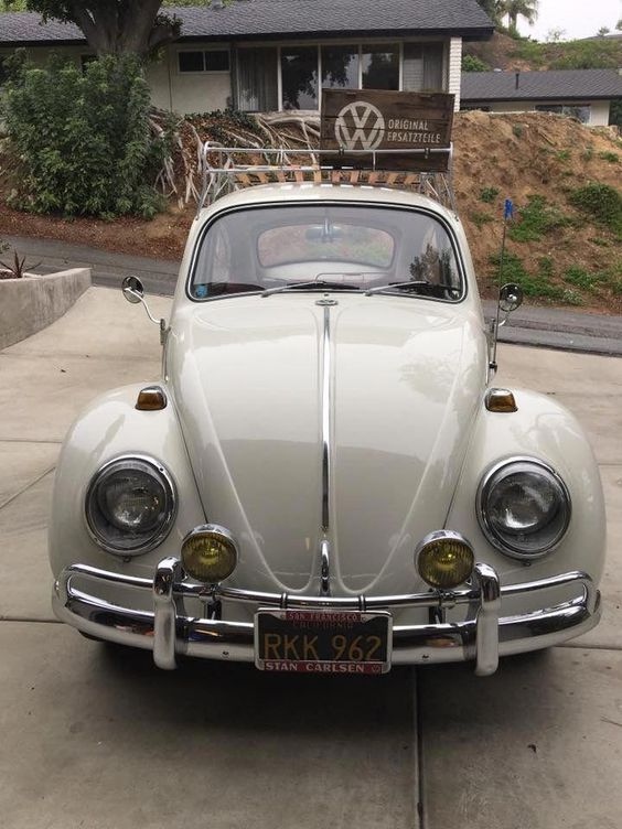 12 Beetle Cars One Should Check Out Beetle Car Vw Beetle Classic Volkswagen Beetle