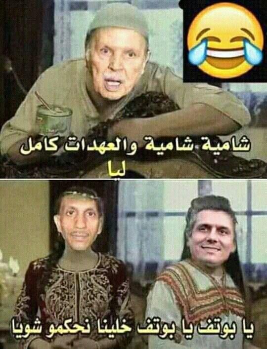 هههه خخخخخخخ تبا كم نحن شعب تافه و رائع وتحية لڨاع لي لحنوها Funny Arabic Quotes Funny Picture Jokes Jokes