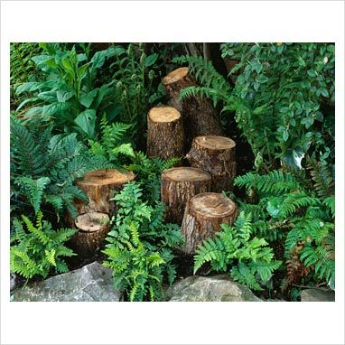Stumpery, maybe some lanturns with candles on them??