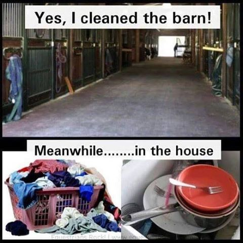 This Is So Me The Barn Is Always Clean And The Household Chores Always Behind Horse Jokes Horse Quotes Funny Funny Horse Memes
