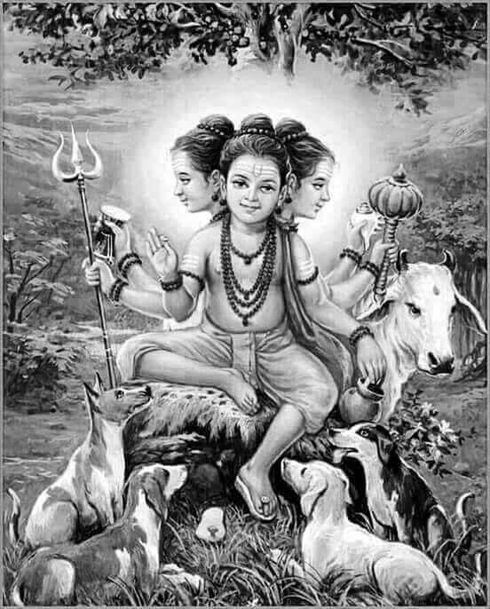 Top 60 Best Lord Dattatreya Images Datta Guru Wallpaper Images Hd Hindu Deities Lord Ganesha Paintings Shiva Hindu God datta hd wallpaper download
