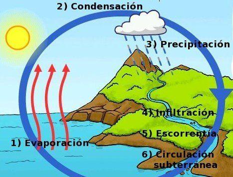Ciclo Del Agua Ecologíahoy Ciclo Del Agua Maqueta Ciclo Del Agua Ciclo Hidrologico