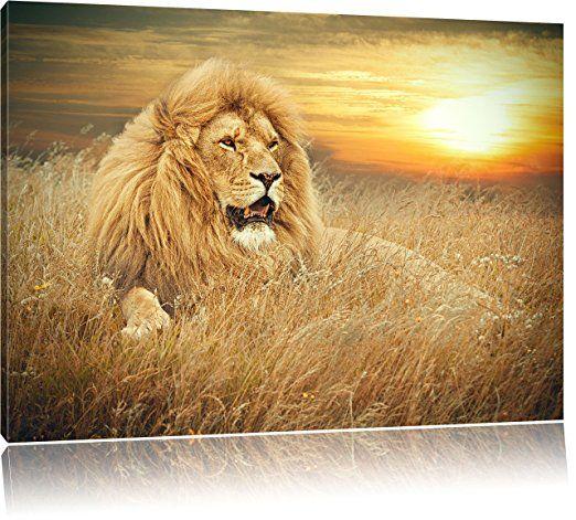 machtiger lowe format 60x40 auf leinwand xxl riesige bilder fertig gerahmt mit keilrahmen kunstdruck wandbild lion wall art pictures mein foto bestellen