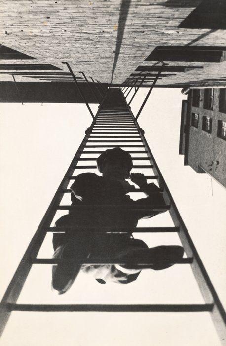 Suba o primeiro degrau com fé. Não é necessário que você veja toda a escada. Apenas dê o primeiro passo. - Martin Luther King #true