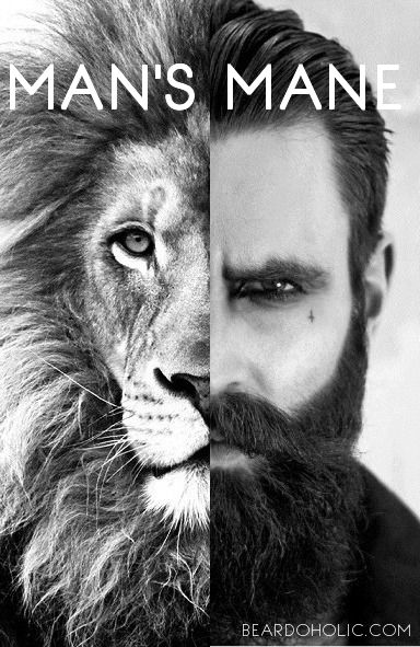 Beard is Like Lion's Mane. It represents Power and Authority. Best beard humor and funny quotes and memes from Beardoholic.com