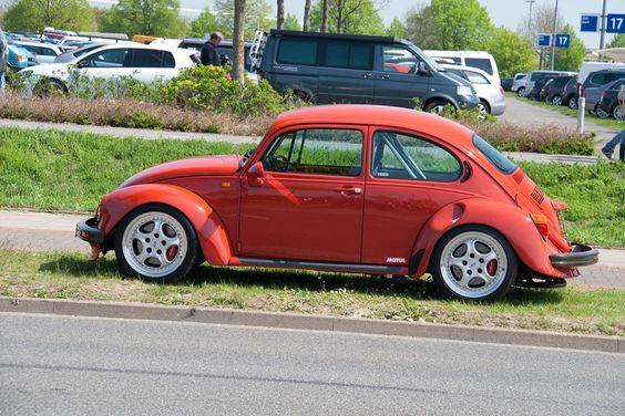 german look beetle