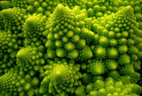 """A fractal is generally """"a rough or fragmented geometric shape that can be split into parts, each of which is (at least approximately) a reduced-size copy of the whole,""""[1] a property called self-similarity. The term was coined by Benoît Mandelbrot in 1975 and was derived from the Latin fractus meaning """"broken"""" or """"fractured.""""  -Wikipedia"""