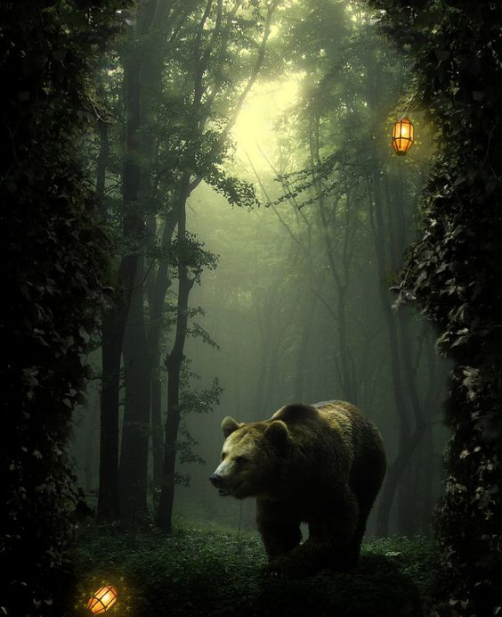 Fantasy Forest Bearby ~Storms-Stock  Digital Art / Photomanipulation / Fantasy ©2011-2012 ~Storms-Stock  My forest fantasy bear taken from my other accounts profile and edited a lot more. Just perfect on a black background
