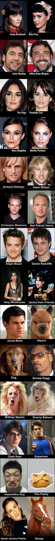 Celebrity look alikes: