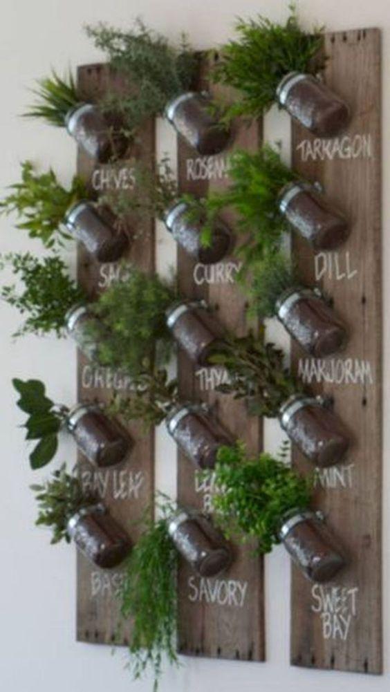 Mason jar, herb planters attached on a wooden board #gardenIdeas #garden #gardening #plants #homeDecor #indoor