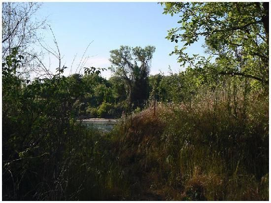 Fun stuff to do in Sacramento, Ca American River Parkway - A picturesque 23-mile stretch of land along the American River that offers visitors wonderful