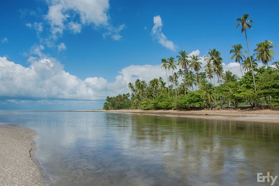 Maragogi - Alagoas by Erly Nunes Machado on 500px