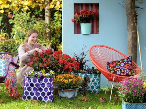 Herbsttrend 2016: Ihr eigener Indian Summer - Pflanzenfreude.de