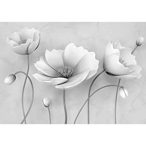 Fototapete Grau Blumen Betonwand 3d Effekt Bluten Blume Xl 350 X