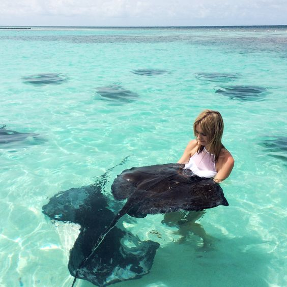 Swim with stingrays in the Cayman islands on one of the cheapest tropical vacations for college students