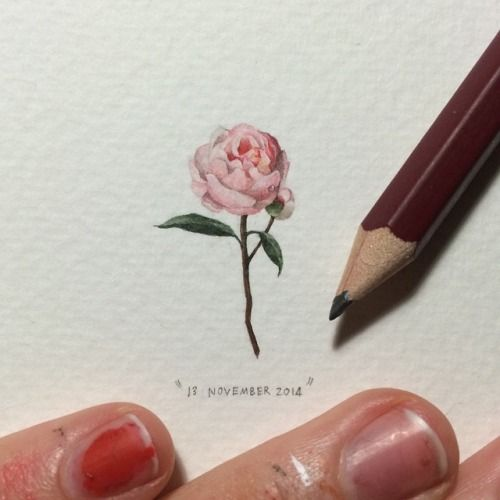 Day 317 : Cape Town-based @opus_studio was founded in 2011 and is a botanical flower shop specialising in hanging gardens, flowers and plant-related designs. They also occasionally source unusual rare flowers like Peonies. 29 x 17 mm. #365postcardsforants #wdc624 #miniature #watercolour #peony #flower #opusstudio (at The Woodstock Foundry)