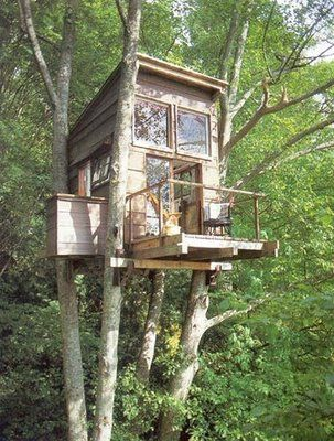 This is a pretty sweet tree house.