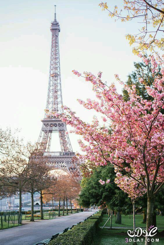 صور لبرج ايفل من زوايا مختلفة رووعة Paris In Spring Paris Paris Travel