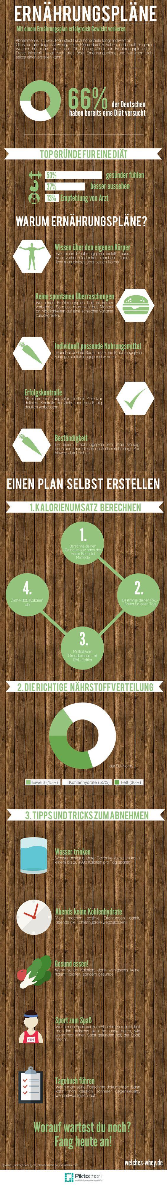Alles über Ernährungspläne... Die beste Infografik mit allen Schritten zum selbst erstellen von Plänen...