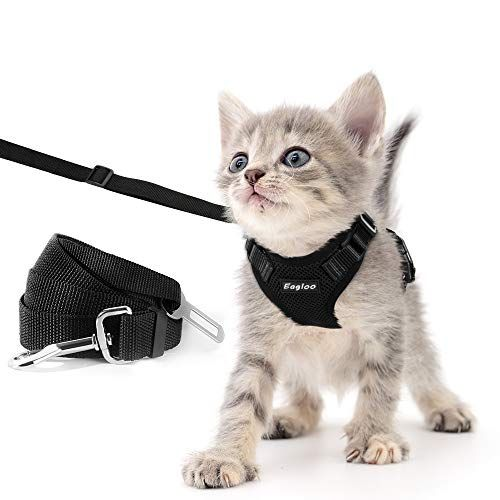 Eagloo Cat Harness And Leash Set For Walking Escape Proof With 2 In 1 Leash And Car Seat Belt Adjustable Harness For Cats Soft In 2020 Cat Harness Dog Deals Pet Leash
