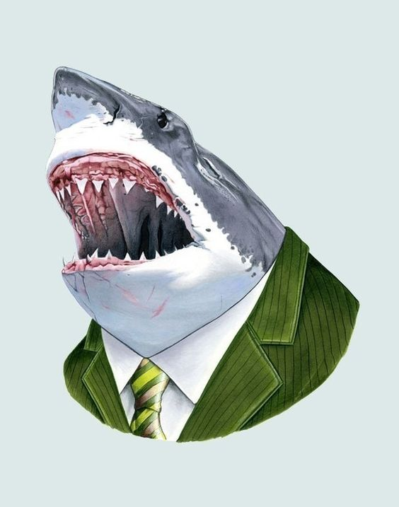 The thing about sharks, is the breath. They can get dressed up, but you can still smell them really far away.