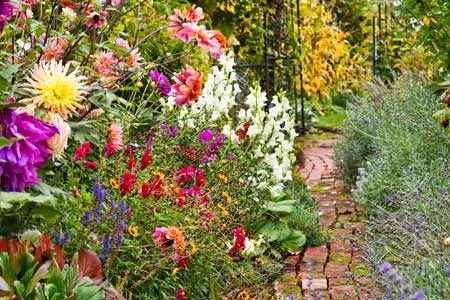 Love the wildflower look here with the repurposed brick walkway -  surrounded by blooming flowers with nearby garden gate