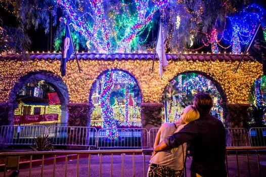 f62c3baa31372d18f725084f9ecc0a1d - Festival Of Lights Moody Gardens December 11