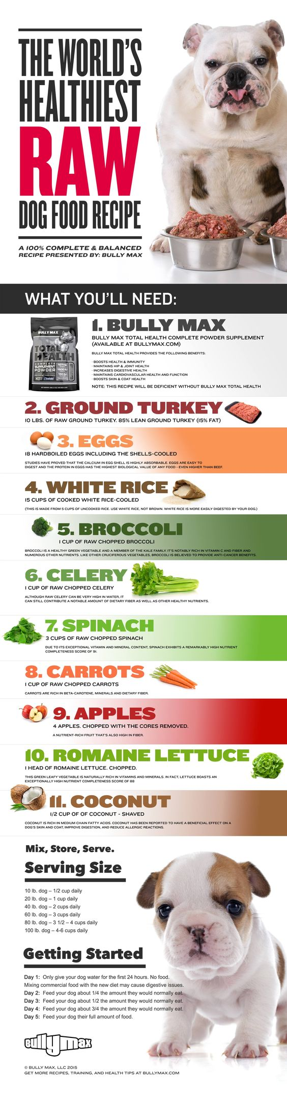 #infographic How to make the world's healthiest #dogfood #pitbulls