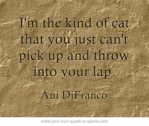"Romantic Quotes Ani: ""I'm The Kind Of Cat That You Just Can't Pick Up And Throw"