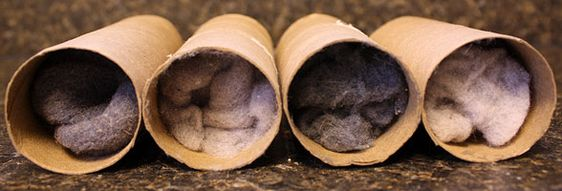 Fire starters from toilet paper rolls & dryer lint.
