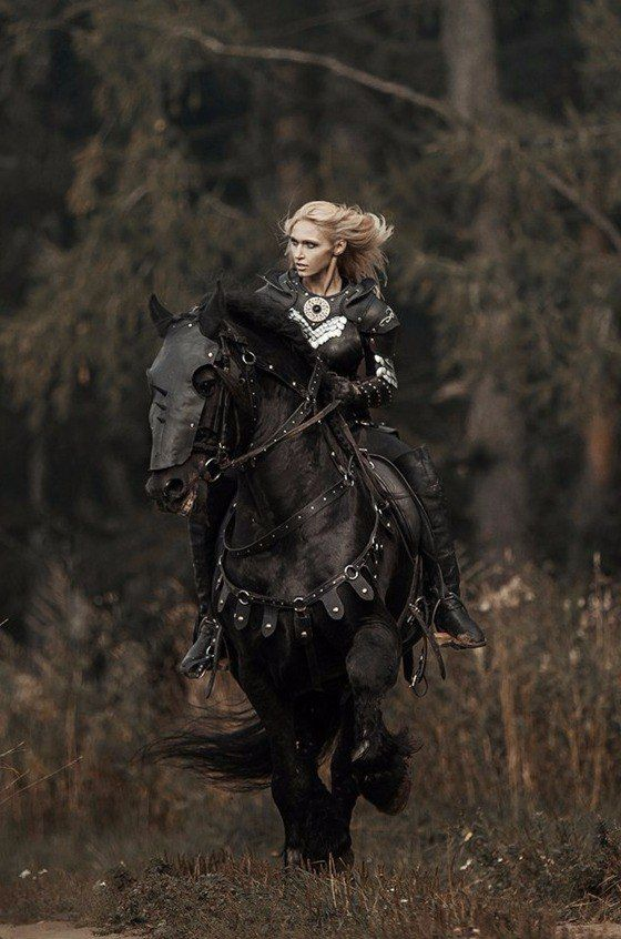 Wall   VK   armor   Horse armor, Horse costumes, Fantasy warrior