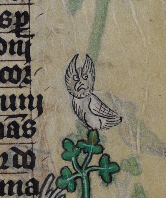 Current state of affairs @BLMedieval Stowe 17 f. 24r: